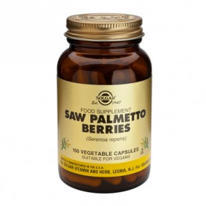 saw-palmetto-berries-101